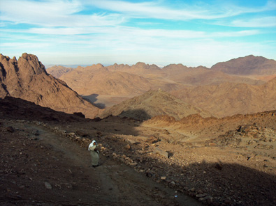 Sinai Desert: It's own kind of beauty