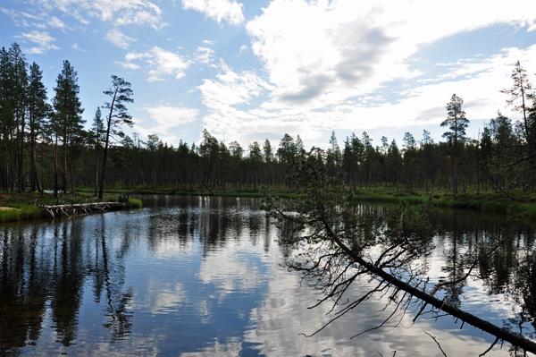Beautiful-Lapland, photo by GoErinGo