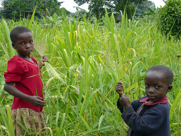 Children in the Field, Uganda © GoErinGo