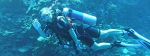 Erin Diving