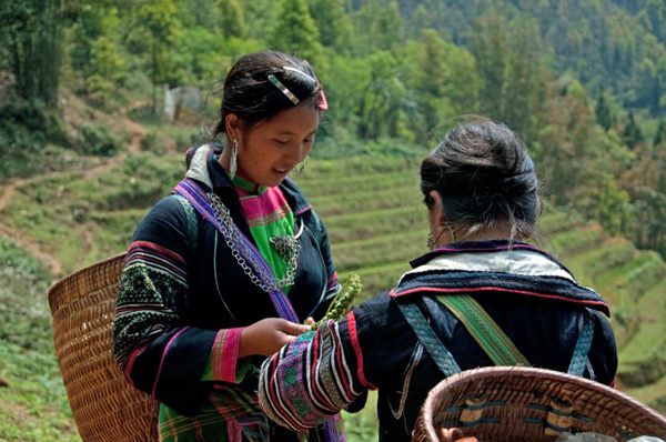 Hmong Girls 2, Sapa, photo by GoErinGo