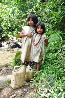 Kogi Children