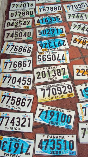 License Plates Vertical