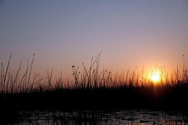 Okavango Delta in Setting Sun, photo by GoErinGo