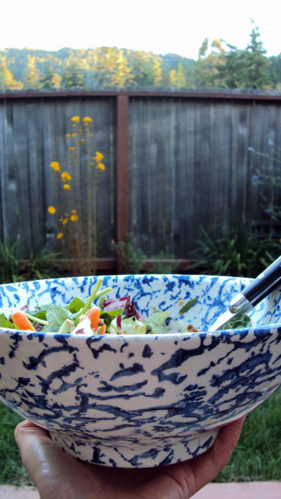 Salad Bowl photo by GoErinGo