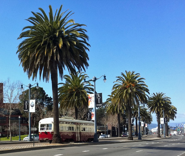 Streetcars along San Francisco's Embarcaedro