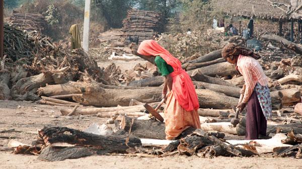 Women-Chopping-Wood, photo by GoErinGo
